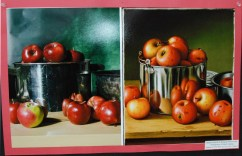 "Madison Blonde and Meaghan McDonough's Photography and Digital Imaging project based on Levi Wells Prentice's ""Apples in a Tin Pan."" Veritas photo"