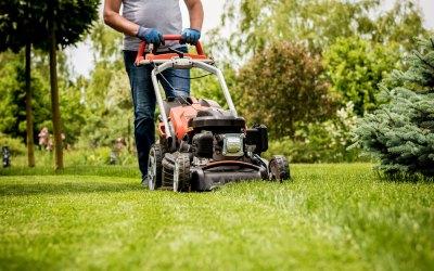 C'est le moment de tondre la pelouse !