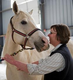 Stefanie Reinhold and a client horse