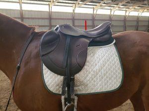 balanced saddle