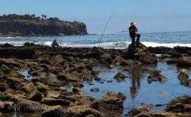 Palos Verdes Fisherman