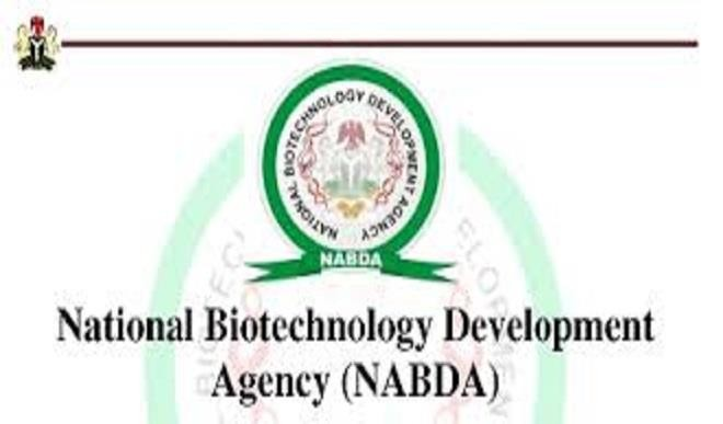 Fg Approves 2 Biotech Crops For Commercialisation – Nabda