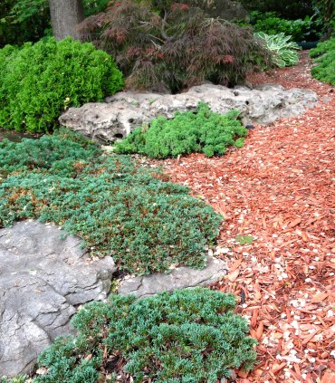 Boulders and bark mulch