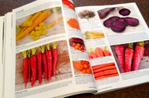 Pages showing carrots