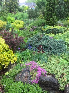 A front garden is filled with plants in springtime