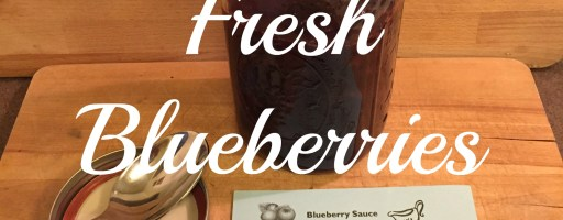 Baking with Fresh Blueberries