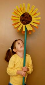 sunflower7-1
