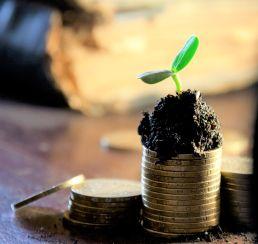money, coins, grow, investment, finances, money mindset