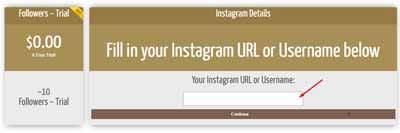 cara auto followers instagram tanpa password dan login