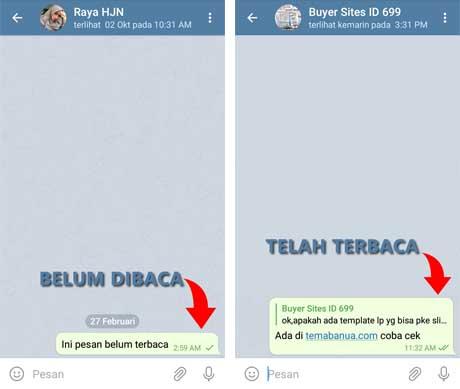 Cara Mengetahui Pesan Telegram sudah di Baca Penerima