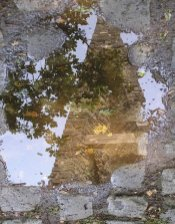 clocher_reflet