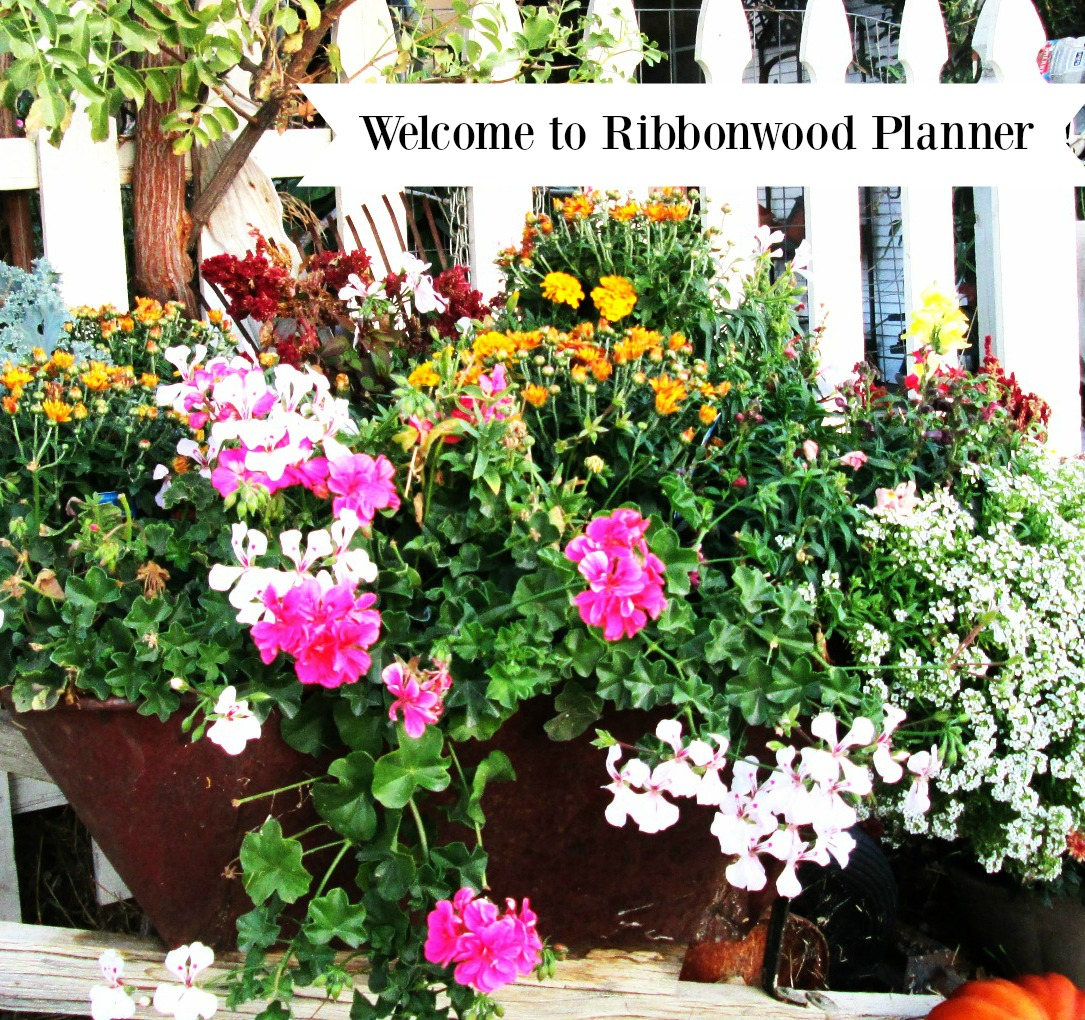 Welcome to Ribbonwood Planner