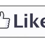 2013 vue par Facebook