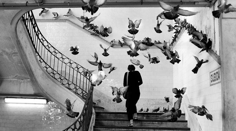 A fotografia segundo henri cartier bresson ricardo hage for Bresson fotografo