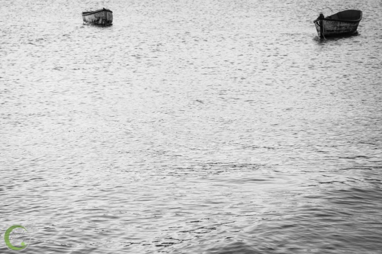 IMG_9965_Praia_20140131