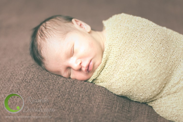 Emanuel_---20141006--2-fotografo-su-de-minas-new-bow-recém-nascido-