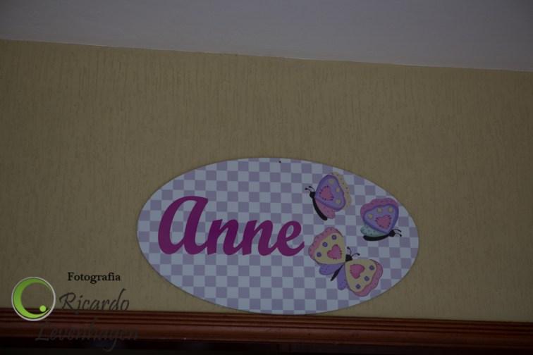 1-ano-Anne---20141129--2-fotografo-su-de-minas-new-bow-recém-nascido-