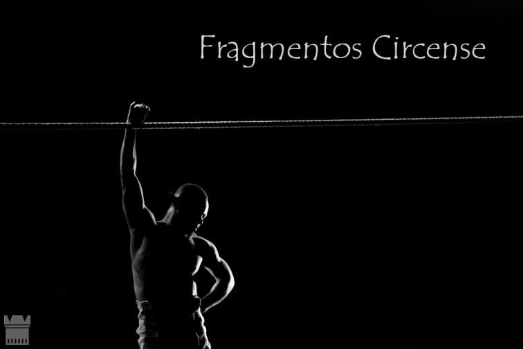 lona-grande-1---20112014--1251ricardo-levenhagen-projeto-Fragmentos-circense-2