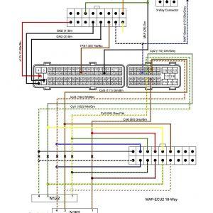 1995 toyota Avalon Radio Wiring Diagram   Free Wiring Diagram