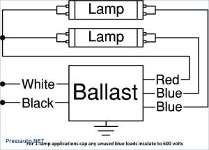 4 Bulb Ballast Wiring Diagram | Free Wiring Diagram
