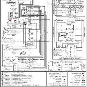 Goodman Heat Pump Air Handler Wiring Diagram   Free Wiring