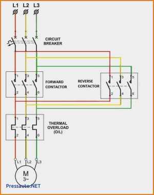 Motor Starter Wiring Diagram Start Stop | Free Wiring Diagram