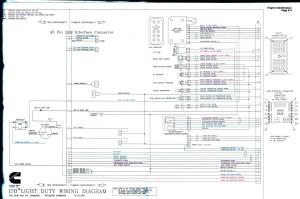 N14 Cummins Ecm Wiring Diagram | Free Wiring Diagram