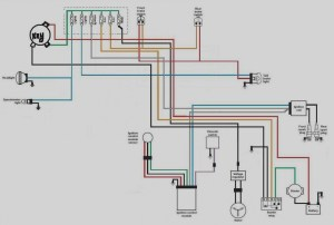Wiring Diagram For 2001 Harley Davidson Sportster $ Downloadappco