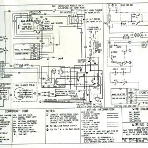 York Rooftop Unit Wiring Diagram   Free Wiring Diagram