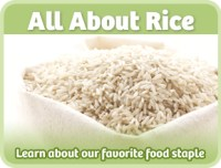 all-about-rice
