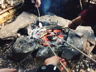 Volunteer Day Trip Marshmallow Toasting