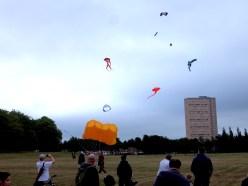 Kites in the Sky