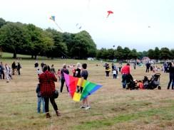 Kite flyers