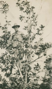 Guy in Tree c1917