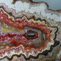 Rice Nortwhest Rock and Mineral Museum - Agate slice