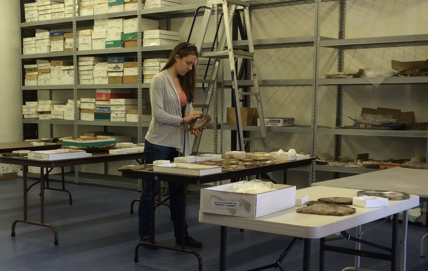 Curator Leslie Moclock stands at table with rock and mineral specimens at Rice Northwest Rock and Mineral Museum in Hillsboro, Oregon.