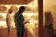 Visitor inside the museum during Summer Fest.