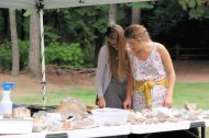 Visitors explore rare jasper and agates at vendor booth.