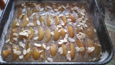 torta-rustica-alle-prugne-perp-2jpg