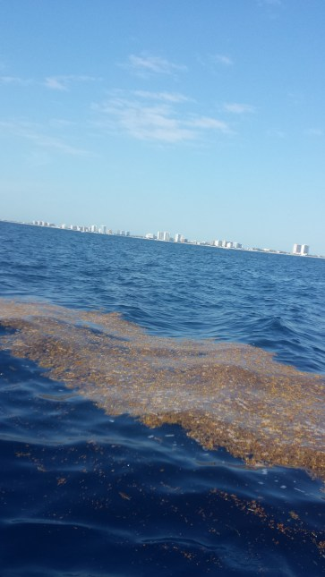 a few miles off Fort Lauderdale