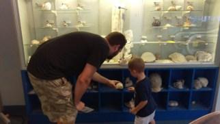Touching the seashells