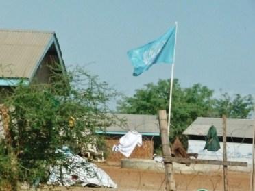 Refugee Center (3)