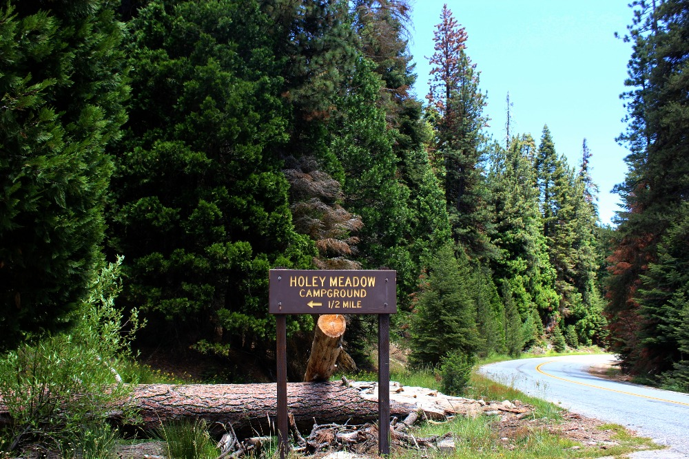 Camping at Holey Meadow Campground 7