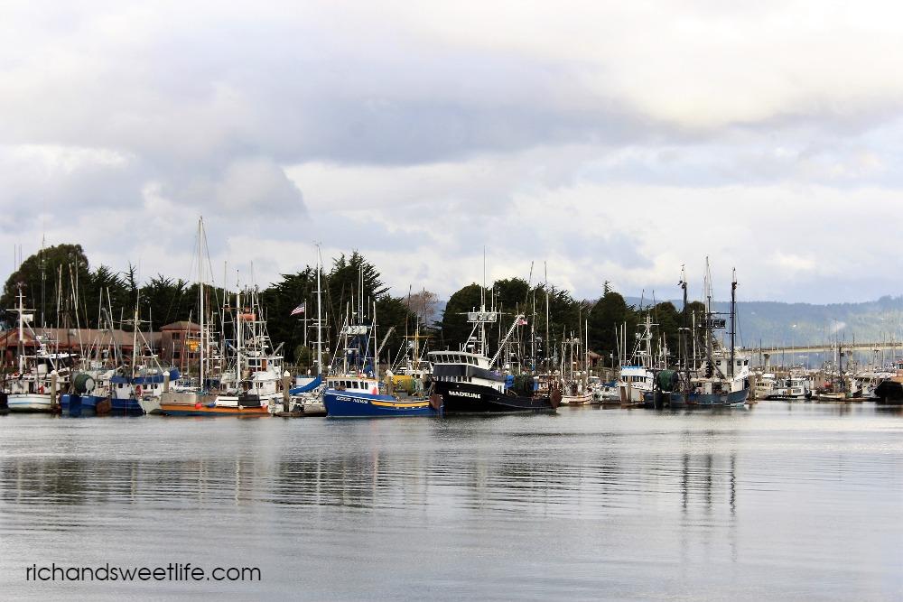 WOODLEY ISLAND MARINA HUMBOLDT 1