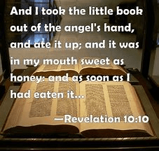 A reference to THE Little Book of revelation which I believe pertains to the same subject matter as my own