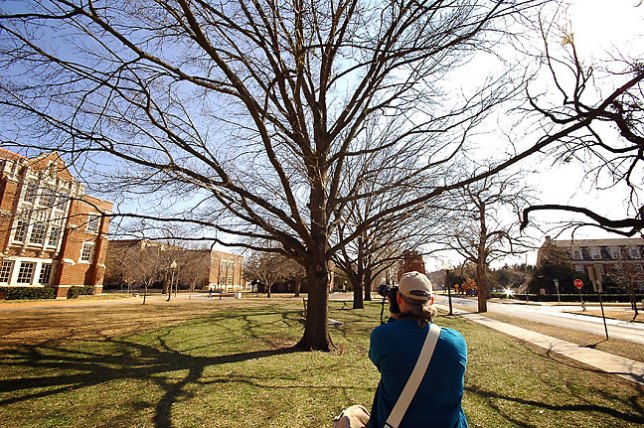 Whether it is a giant oak like this one my friend Michael is photographing at Oklahoma University, or a tiny trembling leaf, the final image should express your vision and feelings about the subject.