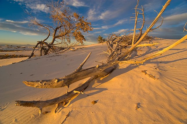 White Sands National Monument, New Mexico, November 2010; this was a good shoot, and yielded many great images like this one. Despite my best efforts, this didn't quite take top five honors.