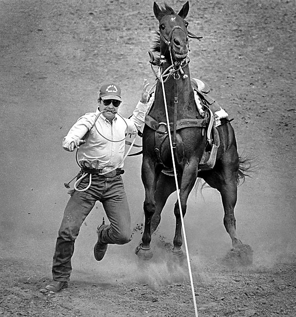 A cowboy leaps from his horse during steer wrestling competition, 1987