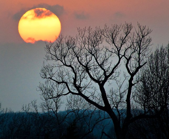 I made this super-telephoto sunset image a couple of years ago on the north side of Ada, Oklahoma. One reason it works so well is that I hurriedly (because the sun sets faster than you think) found a compositional element - the tree - to anchor the image. Without it, it's just a mug shot of the sun.