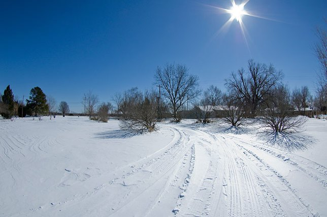 Our driveway covered in snow; I love the deep blue skies and brilliant sunshine on days like this.